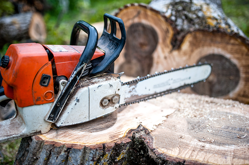 professional chainsaw on pile of cut wood, timber wood